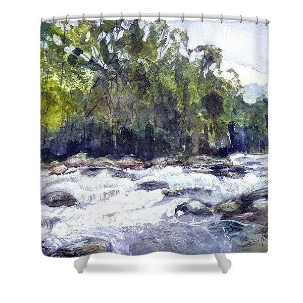 The Cascades Shower Curtain by Barry Jones