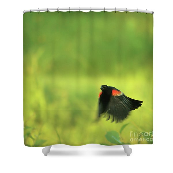 The Dancer Shower Curtain by Aimelle