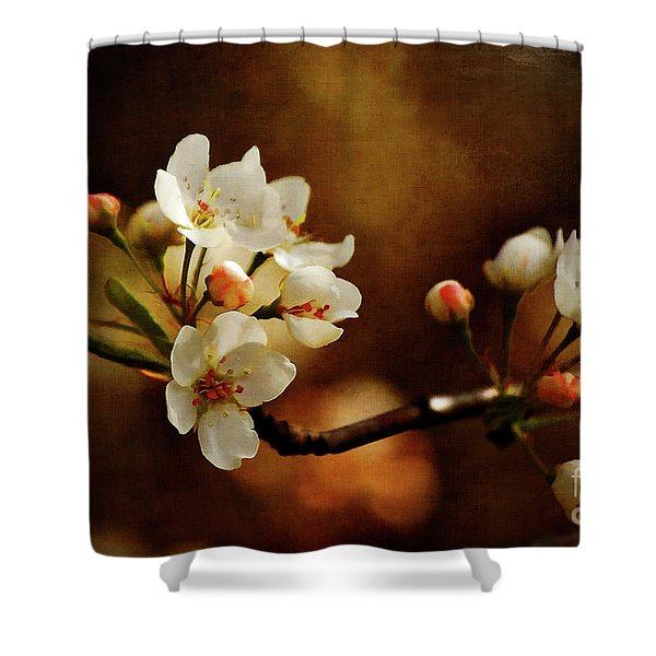 The Fleeting Sweetness of Spring Shower Curtain by Lois Bryan