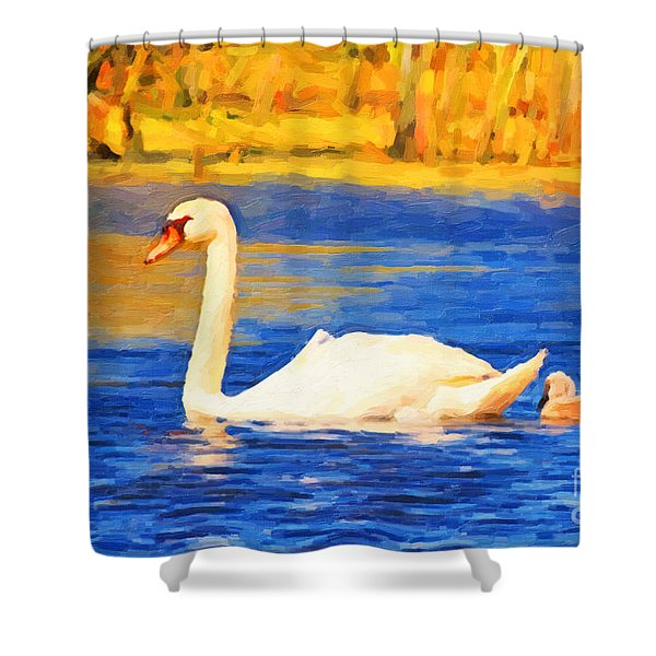 The Swan Family . Photoart Shower Curtain by Wingsdomain Art and Photography