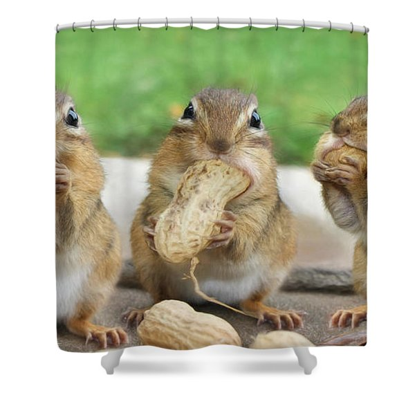 The Three Stooges Shower Curtain by Lori Deiter