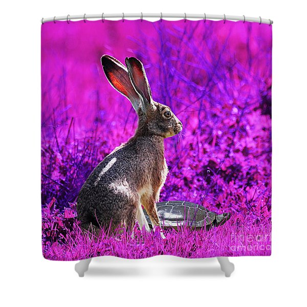 The Tortoise and the Hare . Magenta Square Shower Curtain by Wingsdomain Art and Photography