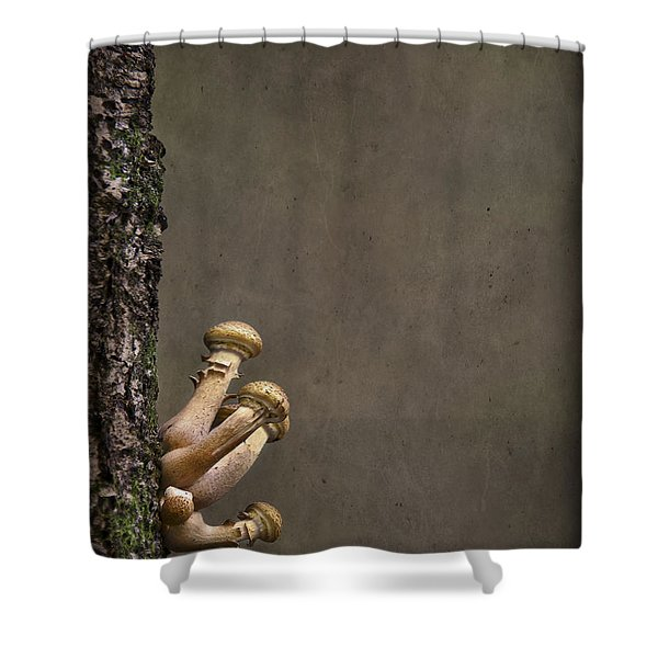Ties That Bind Shower Curtain by Evelina Kremsdorf