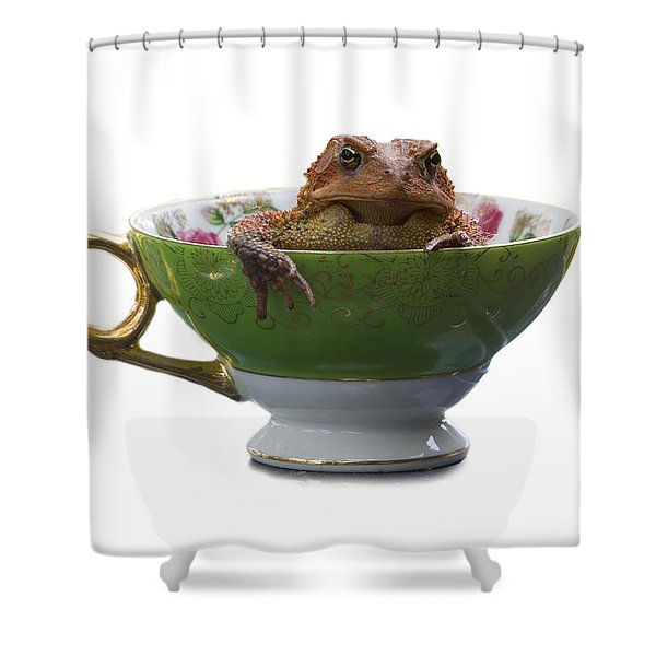 Toad In A Teacup Shower Curtain by Ron Jones