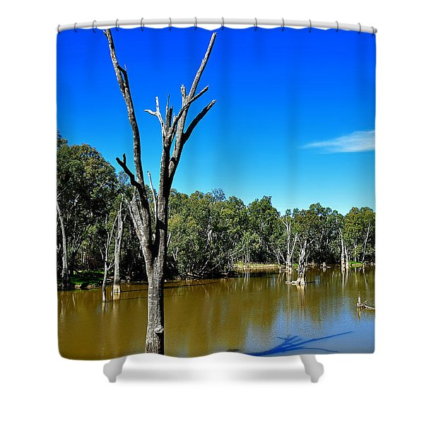 Tree Stumps in Beauty Shower Curtain by Kaye Menner