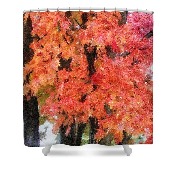 Trees Aflame Shower Curtain by Jeff Kolker