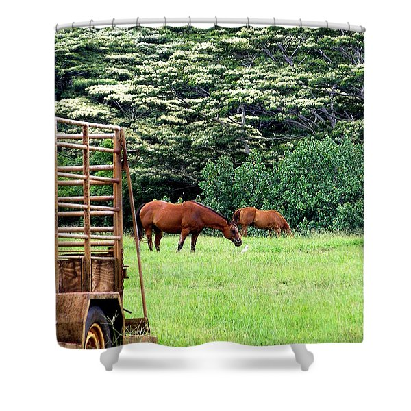 Under the Albesias Shower Curtain by Mary Deal