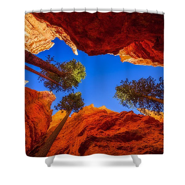 Up From Wall Street Shower Curtain by Chad Dutson