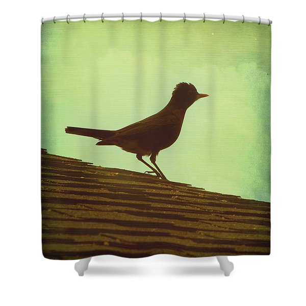 Up On A Roof Shower Curtain by Amy Tyler