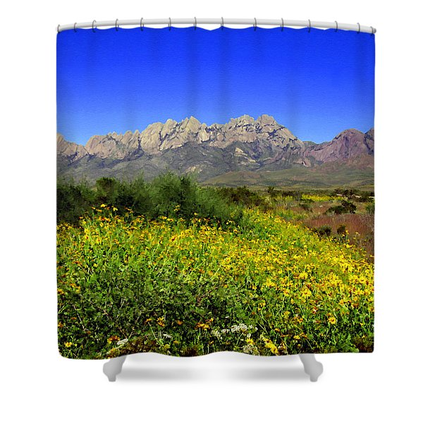 View from Dripping Springs Rd Shower Curtain by Kurt Van Wagner