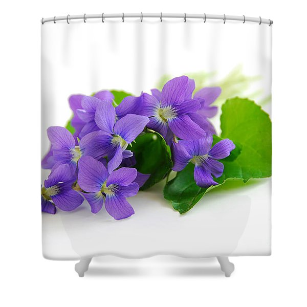 Violets on white background Shower Curtain by Elena Elisseeva