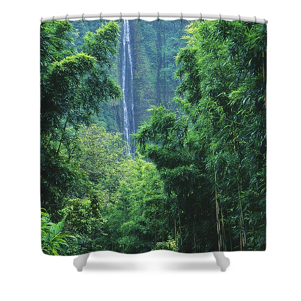 Waimoku Falls Shower Curtain by Dave Fleetham - Printscapes