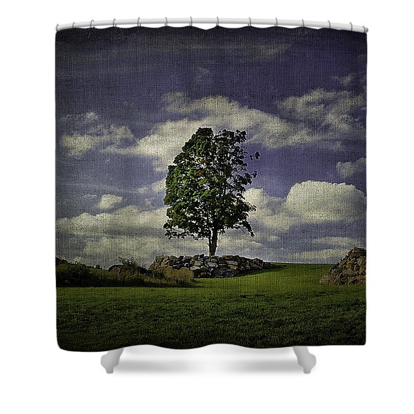 Wake Me Up When September Ends Shower Curtain by Evelina Kremsdorf