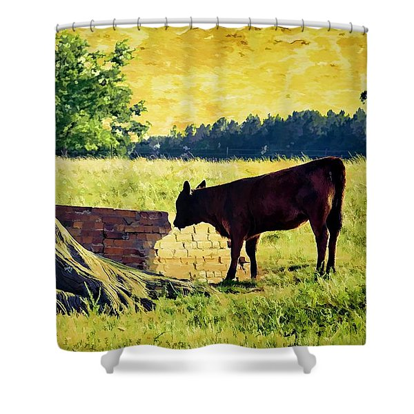 Warming Up In The Morning Glow Shower Curtain by Jan Amiss Photography