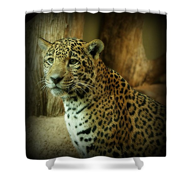 Watching Shower Curtain by Sandy Keeton