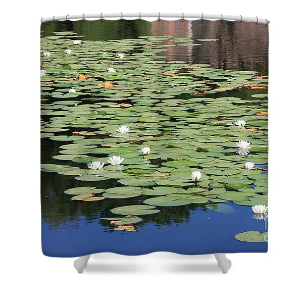 Water Lily Pond Shower Curtain by Carol Groenen