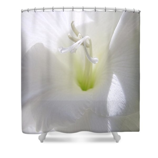 White Gladiola Flower Macro Shower Curtain by Jennie Marie Schell