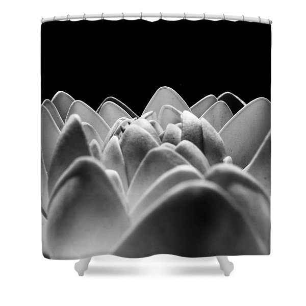 White Lotus In Night Shower Curtain by Sumit Mehndiratta