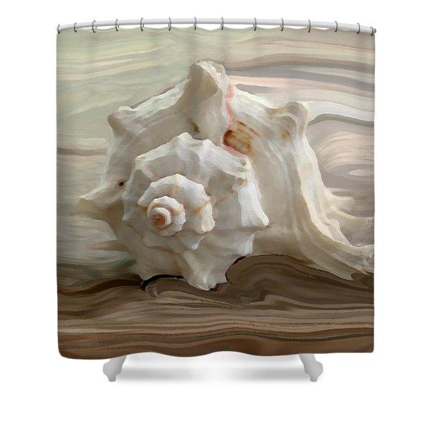 White Shell Shower Curtain by Linda Sannuti