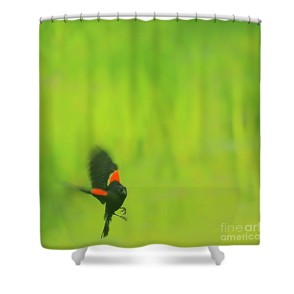 Who are you looking at Shower Curtain by Aimelle