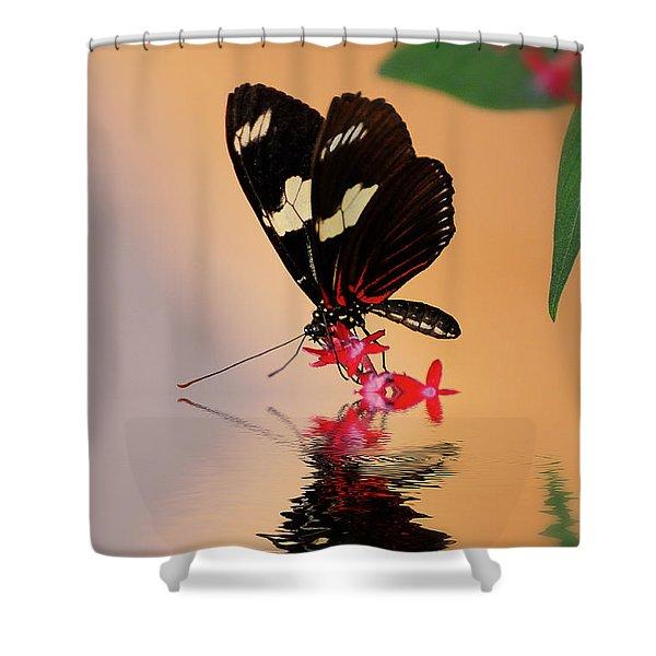 Who's A Pretty Boy Shower Curtain by Lois Bryan