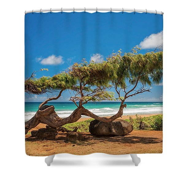 Wind Blown Tree Shower Curtain by Brian Harig