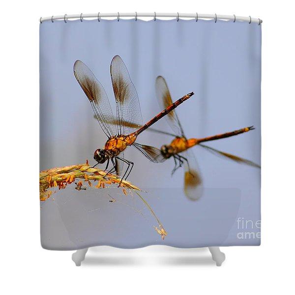 Wingman Shower Curtain by Robert Frederick