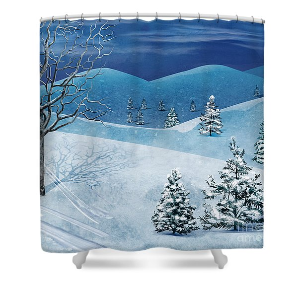 Winter Solstice Shower Curtain by Bedros Awak