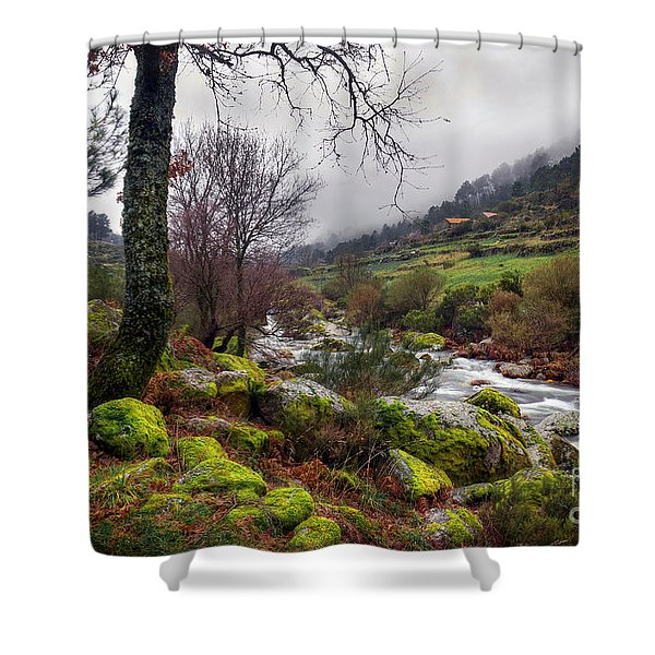 woods landscape Shower Curtain by Carlos Caetano