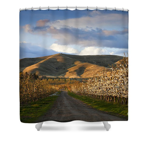 Yakima Valley Spring Shower Curtain by Mike  Dawson