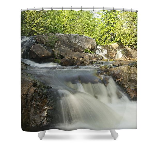 Yellow Dog Falls 3 Shower Curtain by Michael Peychich