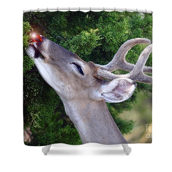 Your Nose So Bright Shower Curtain by Robert Frederick