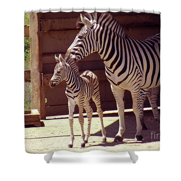 Zebra Mom and Baby Shower Curtain by Methune Hively