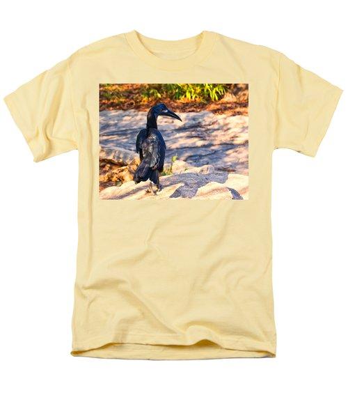 Abyssinian Ground Hornbill Men's T-Shirt  (Regular Fit) by Chris Flees