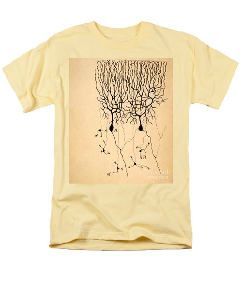 Purkinje Cells By Cajal 1899 Men's T-Shirt  (Regular Fit) by Science Source