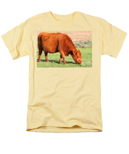 Landscape With Cow Grazing In The Field . 7D9926 T-Shirt by Wingsdomain Art and Photography