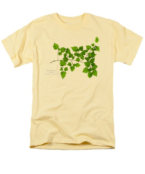 Hawthorn Men's T-Shirt  (Regular Fit) by Christina Rollo