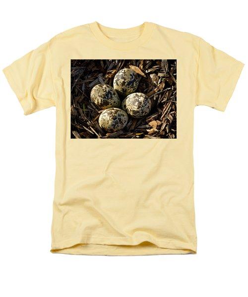 Quartet Of Killdeer Eggs By Jean Noren Men's T-Shirt  (Regular Fit) by Jean Noren