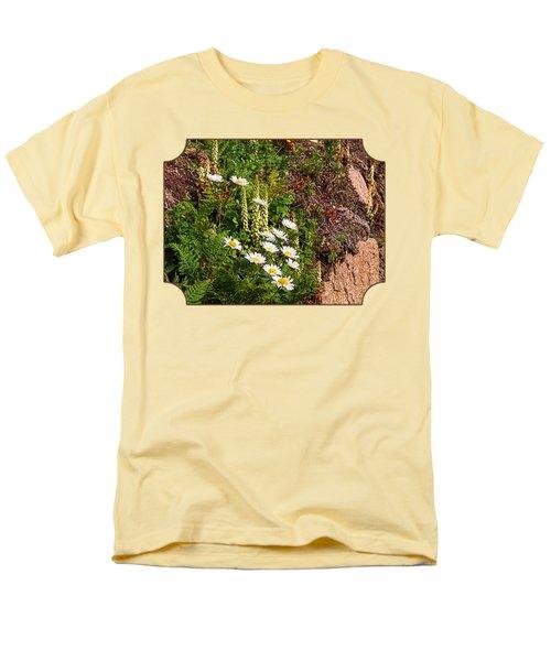 Wild Daisies In The Rocks Men's T-Shirt  (Regular Fit) by Gill Billington