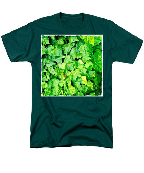 Ivy T-Shirt by Les Cunliffe