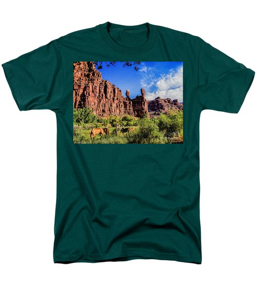 Private Home Canyon Dechelly Men's T-Shirt  (Regular Fit) by Bob and Nadine Johnston