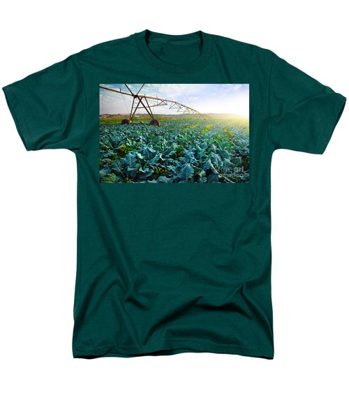 Cabbage Growth Men's T-Shirt  (Regular Fit) by Carlos Caetano