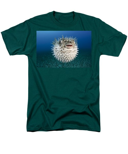 Spotted Porcupinefish III T-Shirt by Dave Fleetham