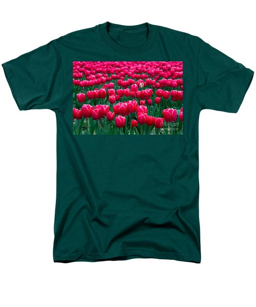 Spring Tulips T-Shirt by David R Frazier and Photo Researchers