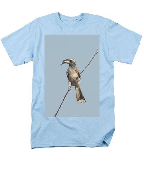 African Grey Hornbill Tockus Nasutus Men's T-Shirt  (Regular Fit) by Panoramic Images