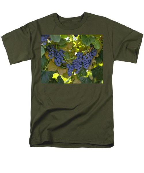 Agriculture - Concord Tablejuice Grapes T-Shirt by Gary Holscher