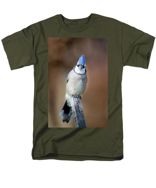 Backyard Birds Blue Jay Men's T-Shirt  (Regular Fit) by Bill Wakeley