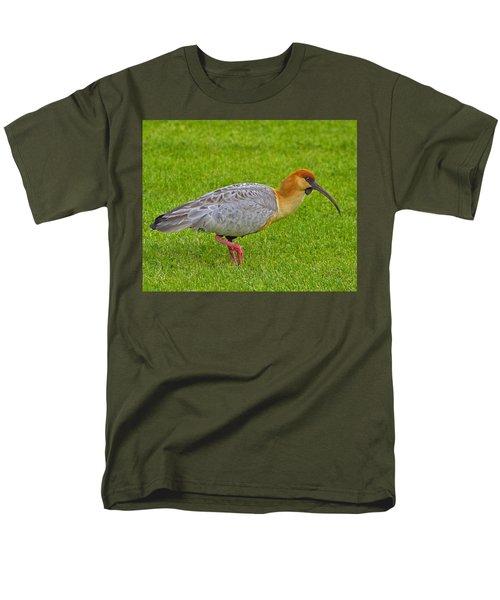 Black-faced Ibis Men's T-Shirt  (Regular Fit) by Tony Beck