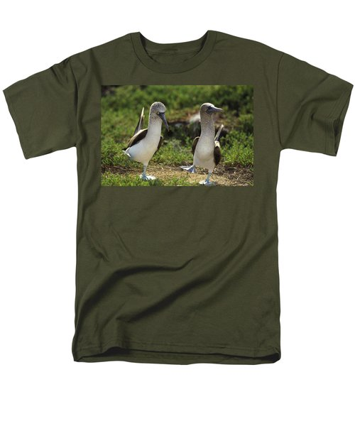 Blue-footed Booby Pair In Courtship T-Shirt by Tui De Roy