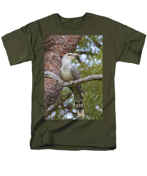 Channel-billed Cuckoo Fledgling Men's T-Shirt  (Regular Fit) by Martin Willis